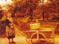 amelan-1960-jeltje-v-d-veen