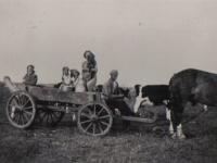 Jaap-Wieringa-1958-melke