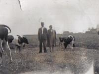 Jaap-enAfke-tusken-de-kij-1947