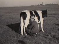 Ruurd-Zwaga-broer-van-Rienk1948-te-melken