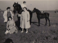 Simmer-1952