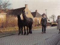 Yme-v-d-Valk-1979-yn-het-hea.