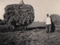 yn-t-hea-1957