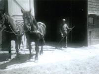 pleats-hendrik-de-vries-1950