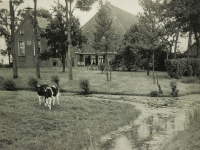 pleats-hendrik-de-vries-kleaterp-4