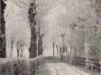singel-1920