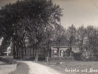 tanialeane-1919
