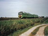 sprinter-groen