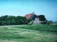 pleats-tj-de-wolf-1964